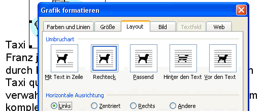 Register Layout im Dialogfenster Grafik formatieren